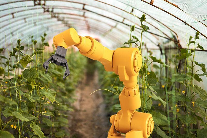 اولین مسابقه های ملی ربات های کشاورزی برای اولین بار در خاورمیانه از سوی سازمان آموزش فنی و حرفه ای کشور و با محوریت اداره کل آموزش فنی و حرفه ای استان گیلان